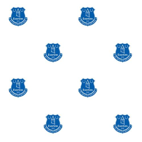 Everton Football Bedroom Ideas